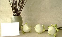 Gift card. Lotus flower bulbs on handmade paper with blank card for text Royalty Free Stock Photos