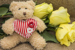 Gift card for birthday - teddy bear and roses Royalty Free Stock Photos