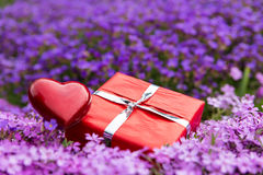 Gift card field of flowers with red present and heart Stock Photo