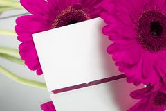 Gift card and flowers. Purple flowers with little gift card Stock Photos