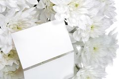 Gift card and white flowers. A bouquet of white flowers with a gift card Royalty Free Stock Photo