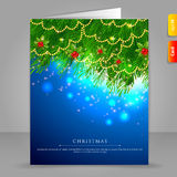Gift card with Xmas branch. Vector illustration of Gift card with Xmas branch Stock Photo