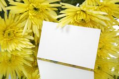 Gift card and yellow flowers. A bouquet of yellow flowers with a gift card Stock Photography