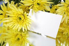 Gift card and yellow flowers. A bouquet of yellow flowers with a gift card Stock Images