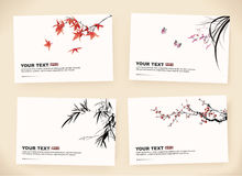 Gift cards. Nature elements design Stock Photo