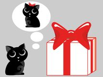 Gift for a cat Stock Photography