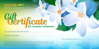 Gift certificate or voucher template for cosmetics treatments with spring floral background and place for your text. Royalty Free Stock Photo