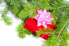 Gift and christmas tree Royalty Free Stock Image