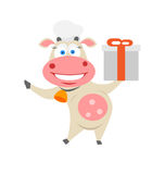 Gift cow. Illustration of chef cow on white background Royalty Free Stock Photos