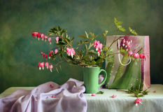 Gift with dicentra Stock Image