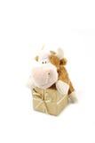 gift doos Royalty-vrije Stock Fotografie