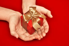 Gift in a female hand Royalty Free Stock Photos