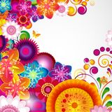 Gift festive floral design background. Spring border. Gift festive floral design vector background Stock Images