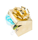 Gift fishing tackles in square box of gold color with bow Royalty Free Stock Image