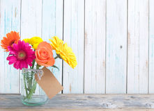 Gift flower background Stock Image