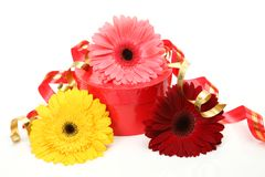 Gift and flowers Stock Photography