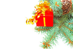 Gift on a fur-tree Royalty Free Stock Photography
