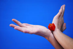 Gift in hands. For Cristmas Royalty Free Stock Photo