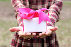 Gift in the hands Stock Photography
