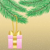 Gift hang on branch fir-tree Stock Images