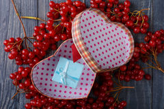 Gift heart viburnum Royalty Free Stock Images