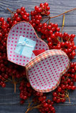 Gift heart viburnum Stock Photography