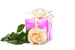 Gift and a large rose. Stock Photos