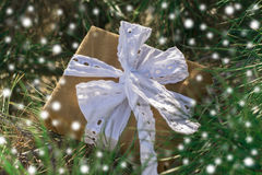 Gift lying under a pine Royalty Free Stock Photo