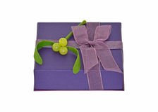 Gift with mistletoe Royalty Free Stock Photo