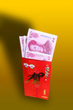 Gift Money For Chinese New Year Stock Photography