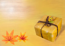 Gift from nature in autumn season. Royalty Free Stock Photos