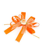 Gift orange ribbon and bow  on white background Stock Image