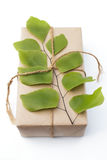 Gift package wrapped with paper and rope with a leaf Stock Image