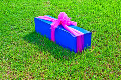 Gift packed in a box Royalty Free Stock Images