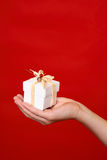 Gift in palm of hand Royalty Free Stock Images