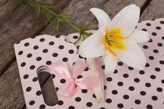Gift paper bag and a white lily flower on the table Royalty Free Stock Photos
