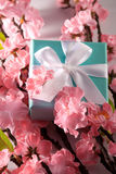 Gift with pink flower and green leaves. An aqua/blue gift knotted in a bow with a white ribbon.Pink flower and green leaves decorates Stock Images