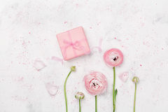 Gift or present box and beautiful ranunculus flower on white table from above for wedding mockup or greeting card flat lay. Gift or present box and beautiful Royalty Free Stock Image