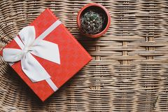 Gift red box with white ribbon on woven bamboo background cozy and warm home welcome concept idea and small lovely green cactus. Gift red box with white ribbon royalty free stock images