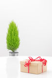 Gift with red ribbon and little green tree Royalty Free Stock Photos