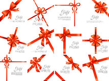 Gift Red Wide Ribbon. Bright Bow with Two Petals Stock Images