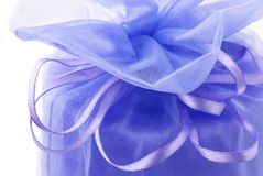 Gift with ribbon`s bow Stock Images
