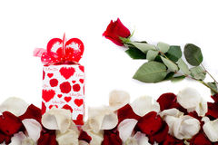 Gift of rose petals. Red rose on white Stock Image