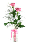 Gift Roses 1 Stock Photography