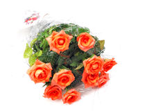 Gift of roses Royalty Free Stock Photo