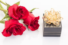 Gift and roses Stock Image
