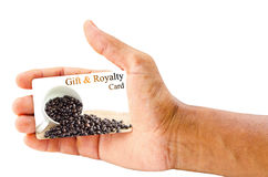 Gift and royalty coffee card. Hand holding gift and royalty coffee card isolated over white background Royalty Free Stock Image