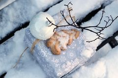 Gift on snow covered bench Stock Images
