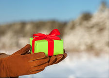 Gift in snow covered forest. Royalty Free Stock Photos