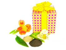 Gift of spa Royalty Free Stock Photo